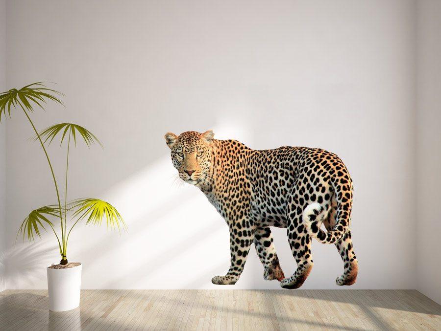 Jaguar | Wall sticker