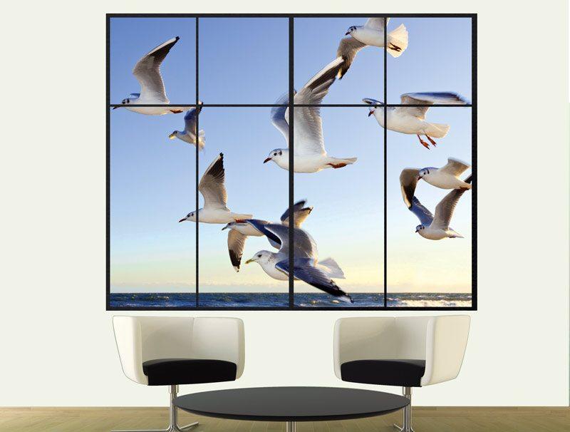 מדבקת קיר תלת מימדית לסלון | מדבקת קיר | שחפים בחלון